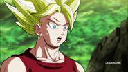 Dragon Ball Super Episode 113 0941