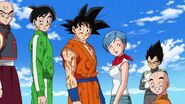 Dragonball Season 2 0084 (258)
