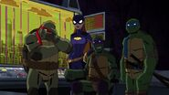 Batman vs TMNT 3079