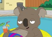 Reginald Koala