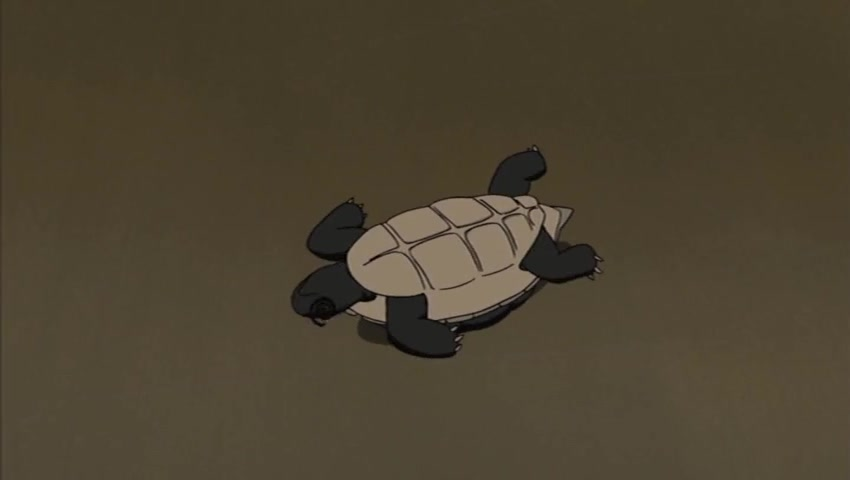 Messenger Tortoise