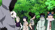 Naruto-shippden-episode-dub-436-0732 27436550187 o