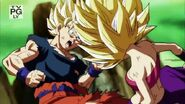 Dragon Ball Super Episode 113 0593