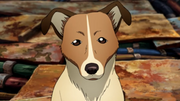 300px-PUP (2).png
