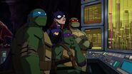 Batman vs TMNT 3068