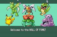 Pokemonemerald11 (6)