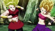 Dragon Ball Super Episode 113 0901