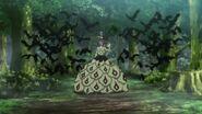 Golumpa Black Clover - 65 0366