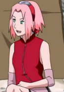 Sakura23 (18)