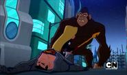 Justice League Action Women (874)