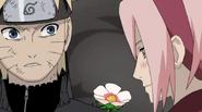 Naruto37708881