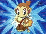 Chimchar (Mystery Dungeon)