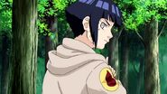 Naruto-shippden-episode-dub-437-0980 41583759944 o