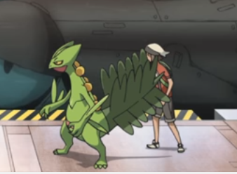 Brendan(Pokemon Generations)