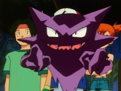 Captain's Haunter