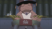 300px-The Great Toad Sage.png