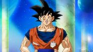 Dragon-ball-67-0765 41166400010 o