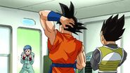 Dragonball Season 2 0084 (286)
