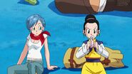 Dragonball Super Tournament (96)