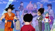 Dragonball Super Tournament (100)