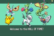 Pokemonemerald11 (32)