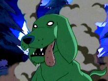 Soto's Dog