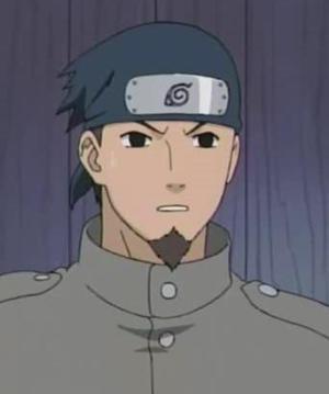 Iwashi Tatami
