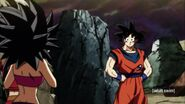 Dragon Ball Super Episode 101 (117)