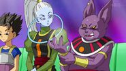 Dragonball Super Tournament (219)
