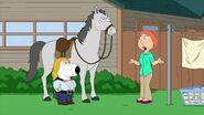 Family Guy 14 (65)