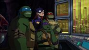 Batman vs TMNT 3070
