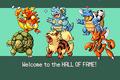 Pokemonemerald11 (15)