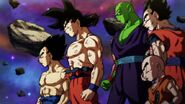 Dragonball Super 131 0941