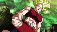 Dragon Ball Super Episode 113 0975