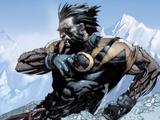 Logan (Wolverine) (Earth-1610)
