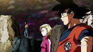 Dragon Ball Super Episode 101 (300)