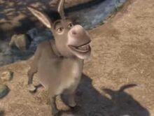 Donkeyshrek.jpg