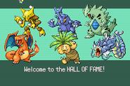 Pokemonemerald11 (17)