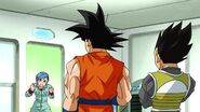 Dragonball Season 2 0084 (287)