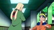 Naruto-shippden-episode-dub-441-0865 28561177278 o