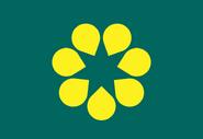 Australian Gold Wattle Flag