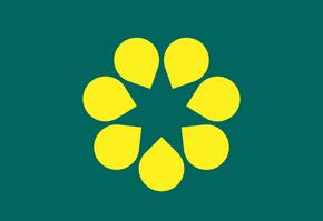 Australian Gold Wattle Flag.png
