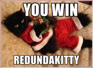 Win redundakitty