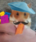 HES-hat2-s.png