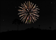 2430 fireworks page2000