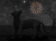 UnderTheSameStars fireworks page2000