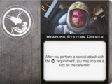 Weapons Systems Officer