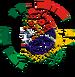 Interlanguage Icon PT-BR.png