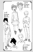 Volume 1 Emma, Norman & Ray Profiles