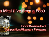 Baka Mitai (I've Been a Fool)